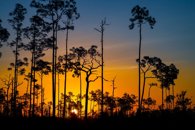 Sun setting at a Great Hiking Destinations in Florida